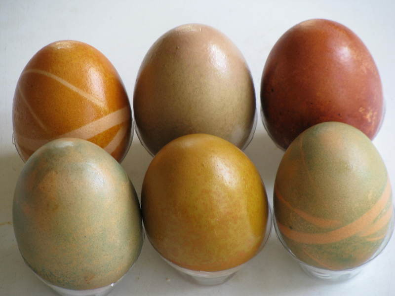 Natural_dyed_eggs_in_a_row