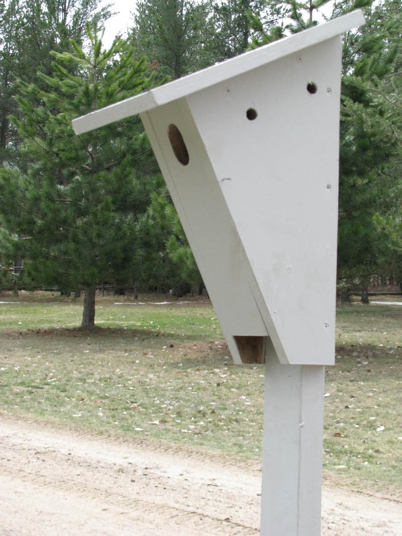 Bluebird_house_closeup